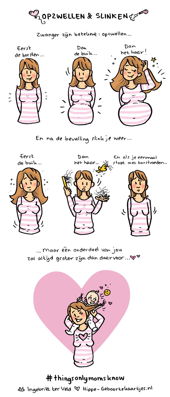 Opzwellen - Deze cartoons beschrijven het moederschap